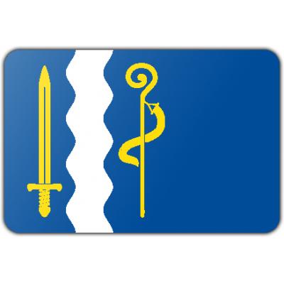 Gemeente Maasgouw vlag (150x225cm)