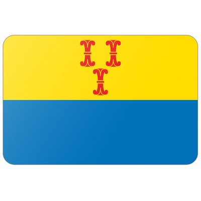 Gemeente Barneveld vlag (70x100cm)
