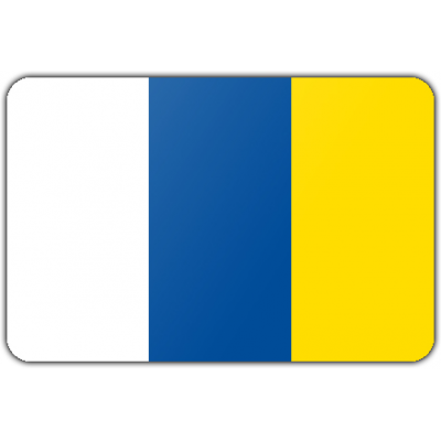 Gemeente Doetinchem vlag (150x225cm)