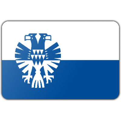 Gemeente Arnhem vlag (200x300cm)