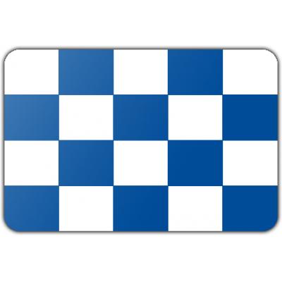 Gemeente Dalfsen vlag (70x100cm)