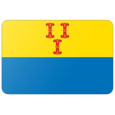 Gemeente Barneveld vlag (200x300cm)