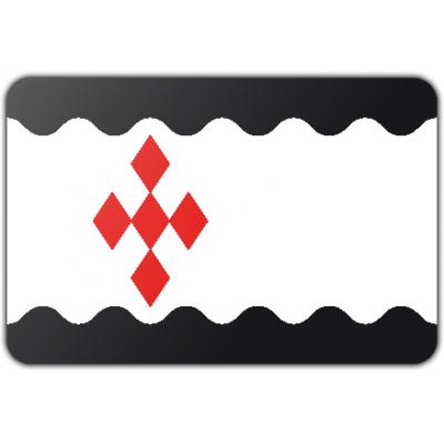 Gemeente Peel en Maas vlag (70x100cm)
