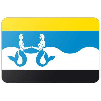Gemeente Schouwen-Duiveland vlag (70x100cm)