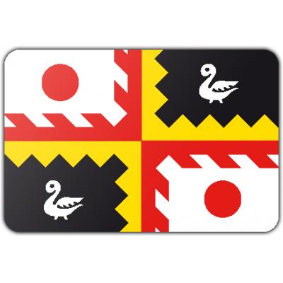 Gemeente Eijsden-Margraten vlag (200x300cm)