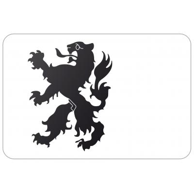 Gemeente Noordwijk vlag (70x100cm)