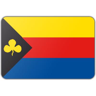 Gemeente Delfzijl vlag (200x300cm)