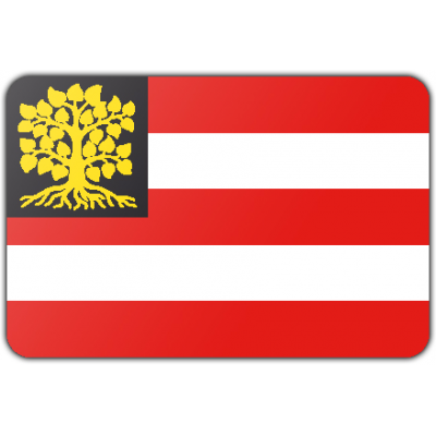 Gemeente s Hertogenbosch vlag (70x100cm)
