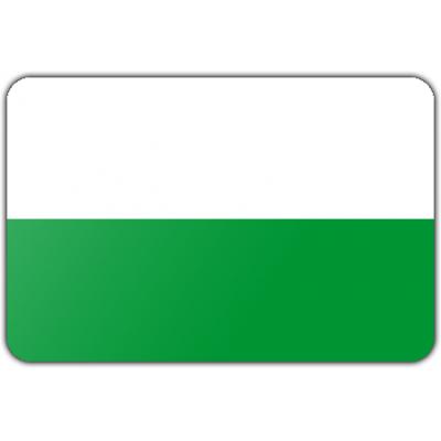 Gemeente Aalten vlag (70x100cm)