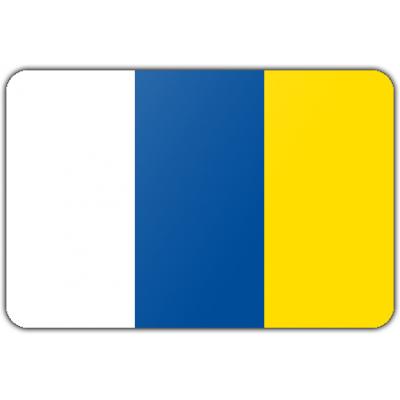 Gemeente Doetinchem vlag (70x100cm)