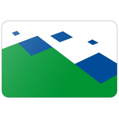 Gemeente Twenterand vlag (200x300cm)