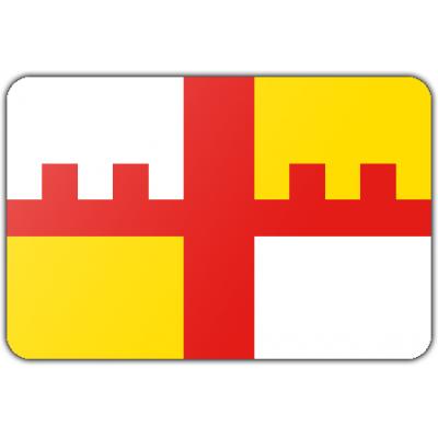 Gemeente Grootegast vlag (200x300cm)