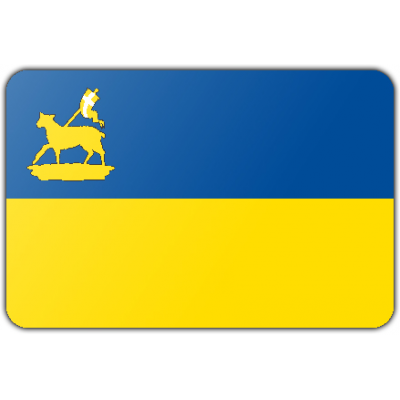 Gemeente Velsen vlag (70x100cm)