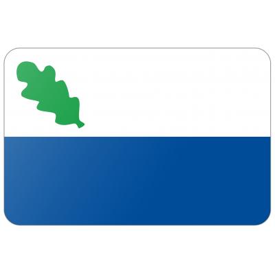 Gemeente Oirschot vlag (150x225cm)