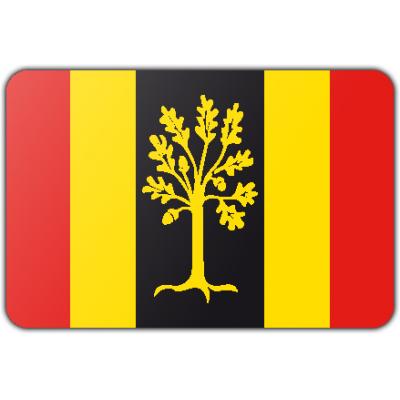 Gemeente Waalwijk vlag (150x225cm)