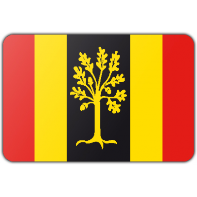 Gemeente Waalwijk vlag (200x300cm)