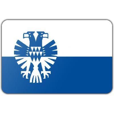 Gemeente Arnhem vlag (70x100cm)