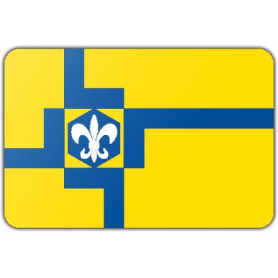 Gemeente Lelystad vlag (70x100cm)