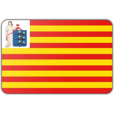 Gemeente Enkhuizen vlag (150x225cm)