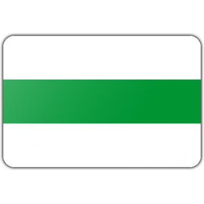 Gemeente Groningen vlag (70x100cm)