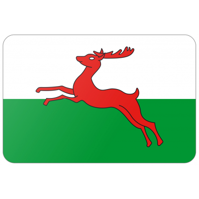 Gemeente Smallingerland vlag (70x100cm)