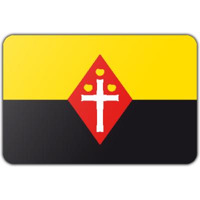 Gemeente Best vlag (150x225cm)