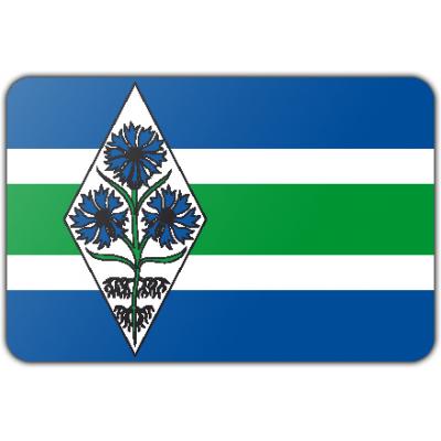 Gemeente Blaricum vlag (100x150cm)