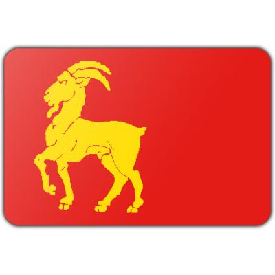 Gemeente Boxmeer vlag (70x100cm)