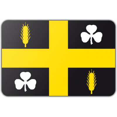 Gemeente Raalte vlag (70x100cm)