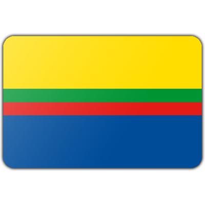Gemeente Appingedam vlag (70x100cm)