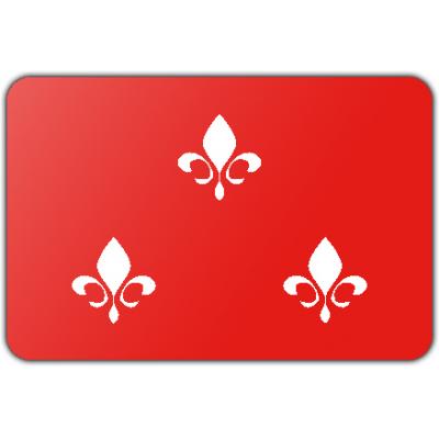 Gemeente Beverwijk vlag (150x225cm)