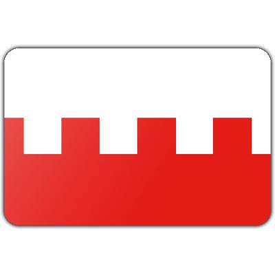 Gemeente Rhenen vlag (200x300cm)