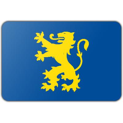 Gemeente Noordwijkerhout vlag (70x100cm)
