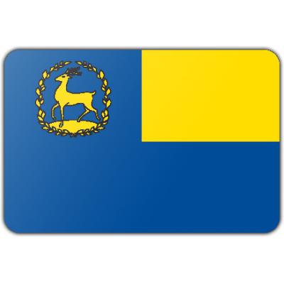 Gemeente Epe vlag (200x300cm)
