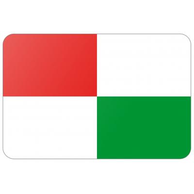 Gemeente Opsterland vlag (70x100cm)