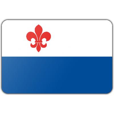 Gemeente Roermond vlag (70x100cm)