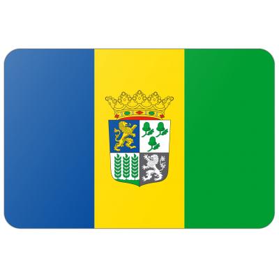 Gemeente Castricum vlag (200x300cm)