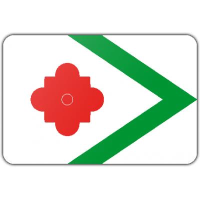 Gemeente Landerd vlag (70x100cm)