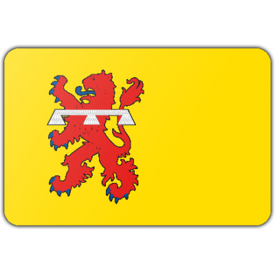 Gemeente Teylingen vlag (70x100cm)