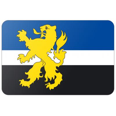 Gemeente Hilvarenbeek vlag (70x100cm)