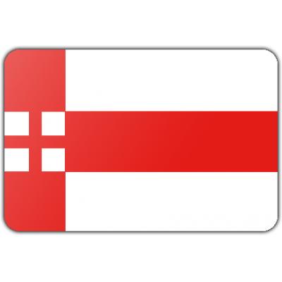 Gemeente Amersfoort vlag (70x100cm)