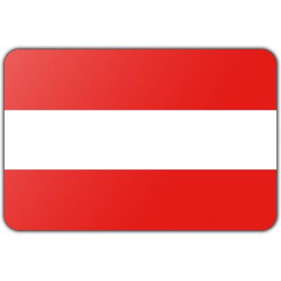 Gemeente Hoorn vlag (70x100cm)