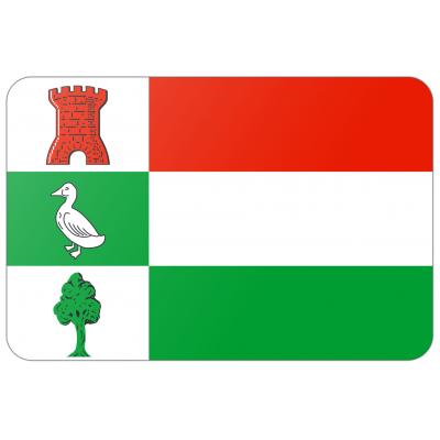 Gemeente Halderberge vlag (70x100cm)