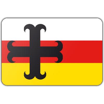 Gemeente Asten vlag (70x100cm)