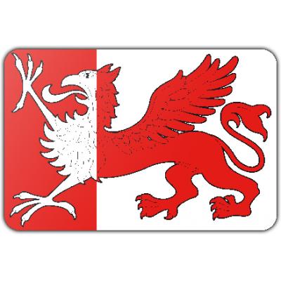 Gemeente Ooststellingwerf vlag (150x225cm)