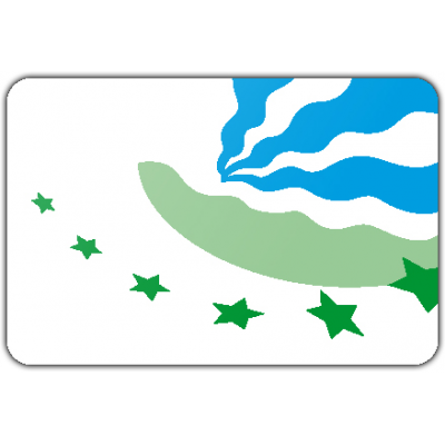 Gemeente Drimmelen vlag (70x100cm)