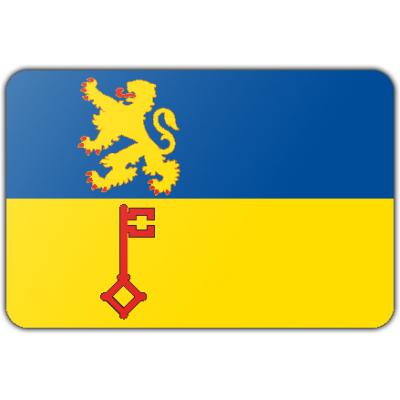 Gemeente Vught vlag (70x100cm)
