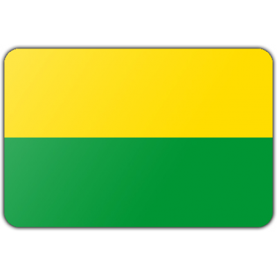 Gemeente Den haag vlag (150x225cm)