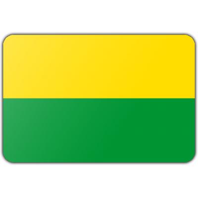 Gemeente Den haag vlag (200x300cm)