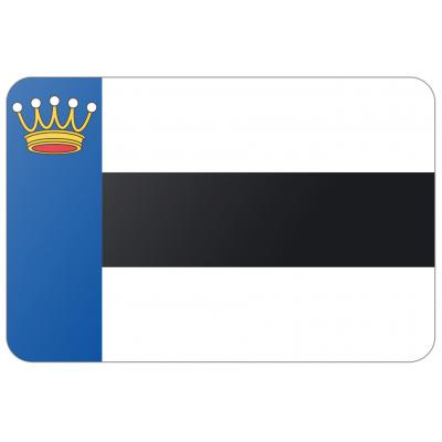 Gemeente Heerenveen vlag (70x100cm)